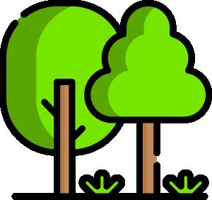 idée promenade en forêt lannemezan